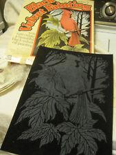 "Vtg Craft Master Black Velvet ""CARDINAL"" Paint by Number Kit 14290 in Orig Box"