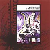 Shelleydevoto - Buzzkunst - CD 2002