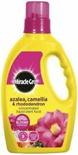 Miracle-Gro Ericaceous - Azalea, Camellia & Rhododendron Liquid Plant Food 1ltr