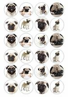 24 Pug Pug Dog Wafer / Rice Paper Cupcake Topper Edible Fairy Cake Bun Toppers