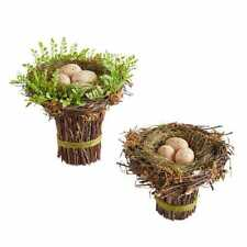 Pier 1 Imports Natural Bird Nest Set 2 Speckled Eggs Spring  New