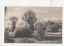 Hospital Grounds Timaru Vintage Postcard New Zealand 595a