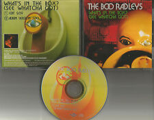 THE BOO RADLEYS What's in the Box w/RARE RADIO EDIT PROMO DJ CD single 1996 MINT