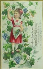 1880's-90's Partridge & Richardson Bee Hive Stores Lovely Girl rapes Vines P83
