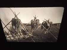"Edward Curtis ""Horn Society"" Blackfoot Native American photography 35mm slide"