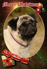 Pug Dog A6 Christmas Card Design XPUG-9 by paws2print