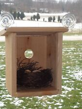 Window Birdhouse, View Nest & Babies, Educational, Made with Natural Red Cedar