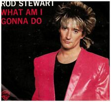 15364 - ROD STEWART - WHAT AM I GONNA DO