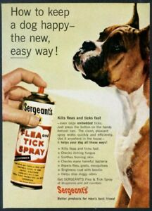 1960 boxer dog photo Sergeant's Flea and Tick Spray vintage print ad