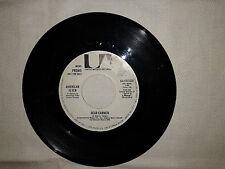 """American Flyer / Flyer – Disco Vinile 45 Giri 7"""" (Mono) EDIZIONE PROMO USA 1977"""
