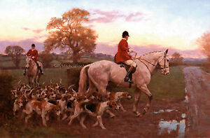 Horse and Hounds, Christmas Cards pack of 10 by Fred Haycock C481X