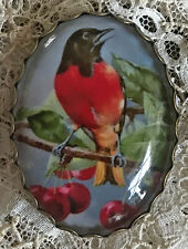 BLACK AND RED BIRD IN CHERRY TREE Glass OVAL DOME BUTTON XL Vintage ART Fruit