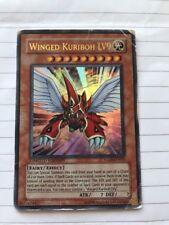 Winged Kuriboh Lv9 Ultra Rare Limited Edition