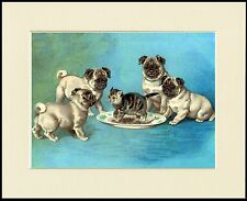 PUG LITTLE DOGS AND CAT LOVELY DOG PRINT MOUNTED READY TO FRAME
