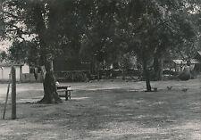 LANDES c. 1935 - 5 Photos Moliets Ferme Chênes-Liège  Nouvelle Aquitaine - L 103