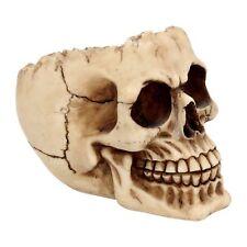 Aschenbecher Schädel Horror Skull Gothic Halloween Totenschädel Dekoration NN95