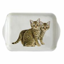 Melamine Tea Tray With Brown Tabby Cats