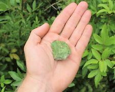 1 Natural Rough Chrysoprase Crystal: Raw Specimen (Healing Reiki Rock Mineral)