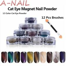 12 Colores Polvo De Ojo De Gato + Brochas 12 piezas espejo mágico en Polvo Polvo Esmalte Gel UV