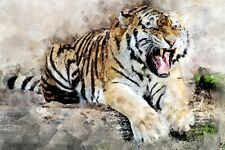 BEAUTIFUL TIGER PAINTING CANVAS PICTURE WALL ART MEDIUM 20x30 INCHES