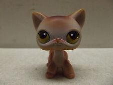 Littlest Pet Shop Cat Kitten #19? Tan Brown Short Hair Green/Yellow Eyes