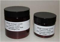 Brine Shrimp Eggs Premium BBS Average 90% Hatch Rate Artemia Cysts Fry/Fish Food