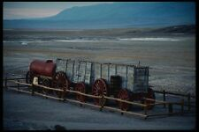 143024 Death Valley 20 Mule Team wagon A4 papier photo