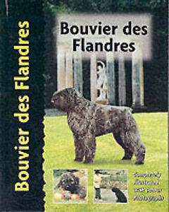 Bouvier des Flandres by Robert Pollet - Pet Love - Hardback NEW