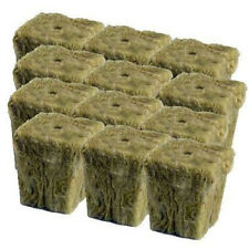 "Grodan 1"" x 1"" - 12 count - rockwool stonewool hydroponics grow starter cubes"