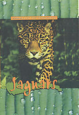 Jaguars (Animals Of The Rainforest) by Patrick Lalley (Hardback, 2003)