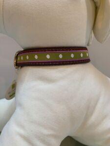 UpCountry Dotty Stripe Dog Pet Collar Size L NWT