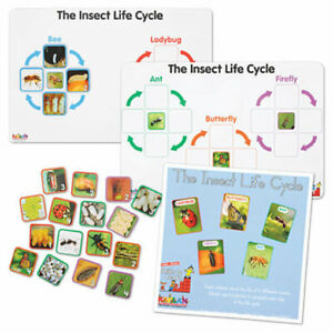 Kaplan Early Learning Company Insect Life Cycle Game - Investigate Bees, Ants,