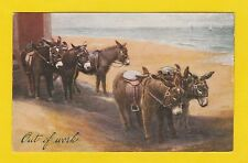 ANIMALS  -  PHOTOCHROM  CO.  LTD.  POSTCARD  -  DONKEYS    (C)   -  C 1920's