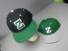LOT of 2 NIKE TRUE Dri Fit Hats W Letter Z Embroidered 10e15ff498d5