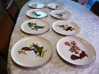 Set of 8 Syracuse China AMERICAN SONGBIRDS PLATES- all different birds