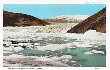 TAKU GLACIER ON TAKU INLET ALASKA~F H NOWELL PHOTO POSTCARD c1920-30s