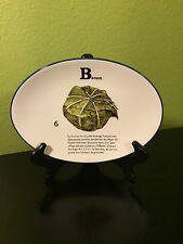 3 Williams Sonoma Fromage Francais Roquefort Oval Cheese Design Snack Plates Set