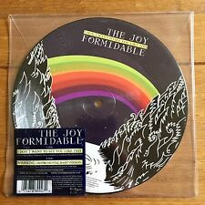 """The Joy Formidable - I Don't Want To See You Like That   7"""" Picture Disc Vinyl"""