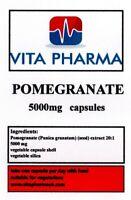 Hoch Stärke Pomegrate 5000mg 60 Kapseln Powerfull Antioxidant