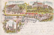 Ak Schönberg. Litho. Restauration zur Herrenmühle von Spahn. Schönberg um 1899