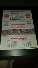 Fiona Apple Fast As You Can Rare Original Radio Promo Poster Ad Framed!