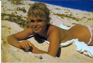 Brigitte Bardot 3 Glossy Photos 10x15cm