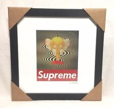 Supreme Fairchild Paris Kaws Tweety Print Picture Limited Numbered Signed 23/200