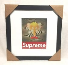 Supreme Fairchild Paris Kaws Tweety Print Reprint Picture Limited Numbered #23