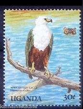 African Fish Eagle, Raptors, Birds of Prey, Uganda MNH -M21