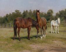 Bonheur Rosa Three Horses In A Landscape Print 11 x 14  #5088
