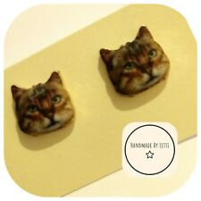 Tabby cat face Megatron The Kitty cat Earring studs Handmade  🐈