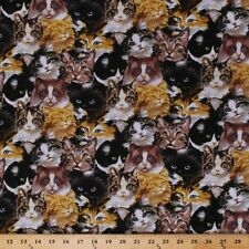 Furrever Friends Fabric - Packed Cat Faces - Blank Quilting YARD