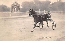 4175) FAENZA (RAVENNA) CORSE TROTTO CAMPIONATO EUROPEO 1910, SHADY G.