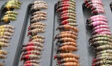 20 Czech Nymph Trout Bum Collection